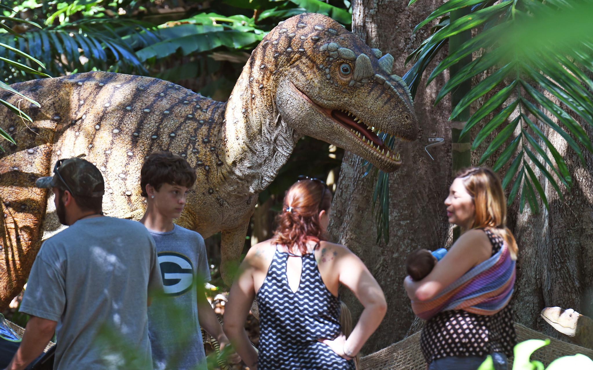 Flamingo gardens showcases dinosaur fossils life sized - Flamingo gardens fort lauderdale ...