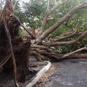After a big storm, expect utilities and services to be disrupted
