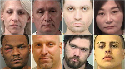 Suburban Chicago arrest photos