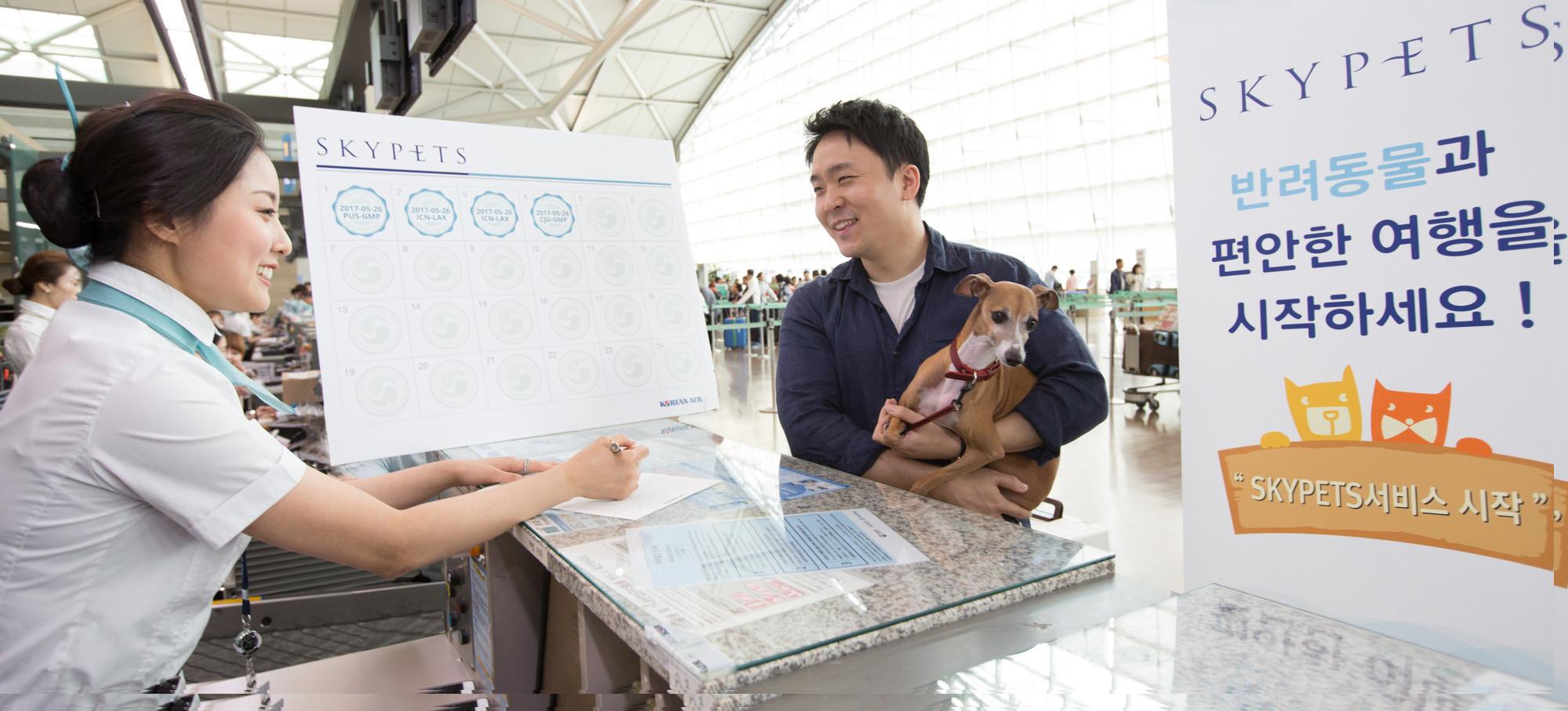 Resultado de imagem para skypets korean air