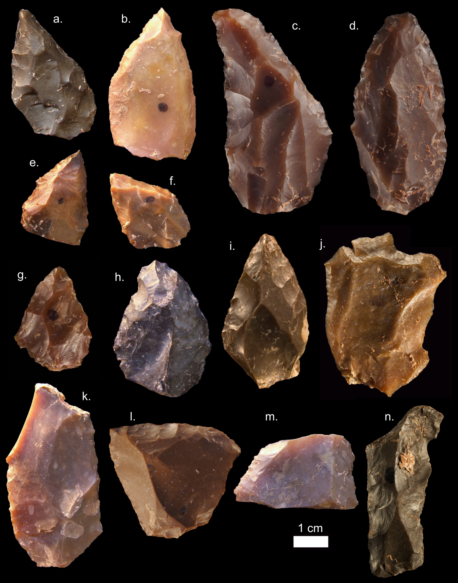 Some of the Middle Stone Age stone tools from Jebel Irhoud in Morocco. Pointed forms (a-i) are common, as are the Levellois prepared core flakes (j-k).