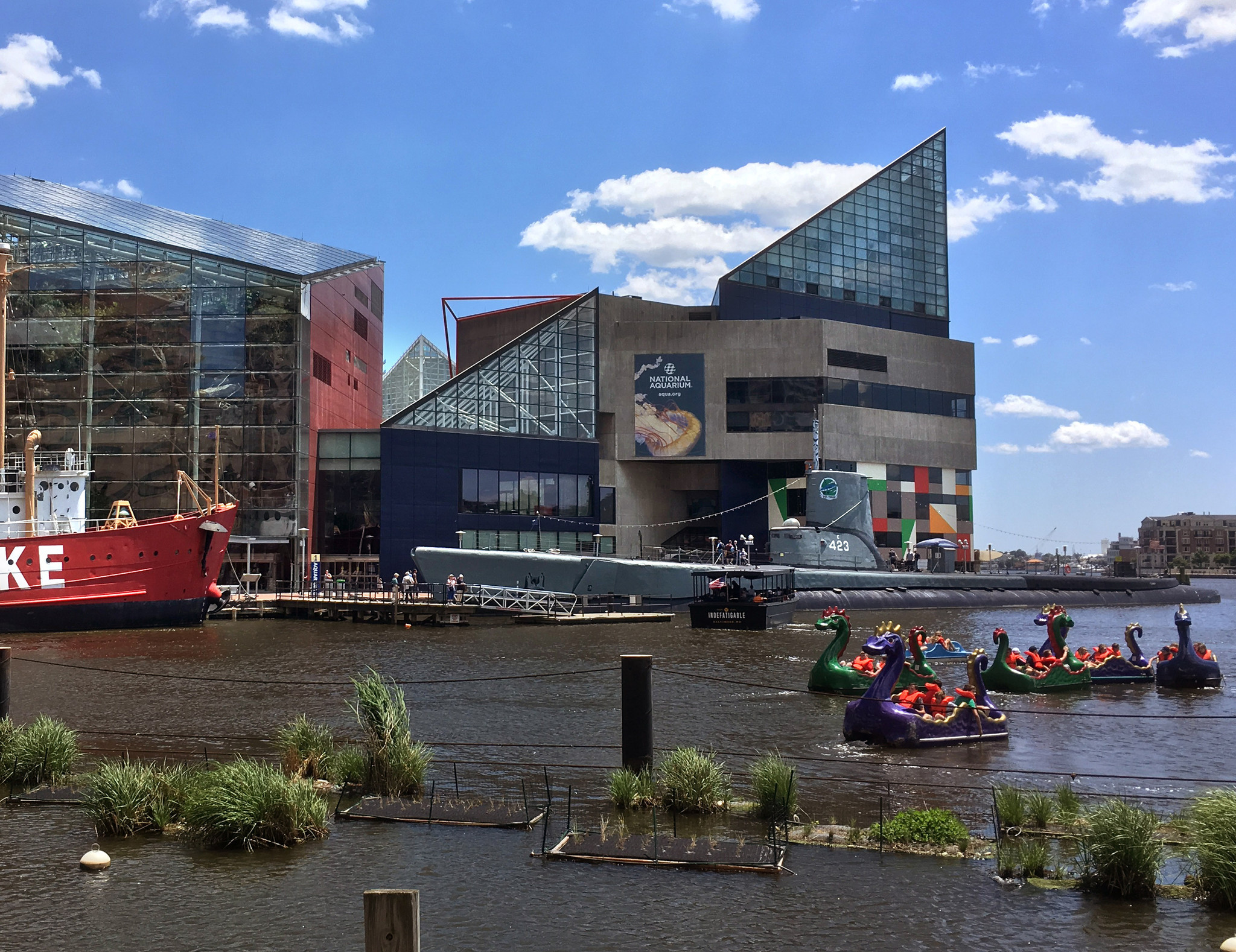 the national aquarium in baltimore an The national aquarium in baltimore is the centerpiece of baltimore's inner harbor here are tips, tours and deals to help you with your visit.