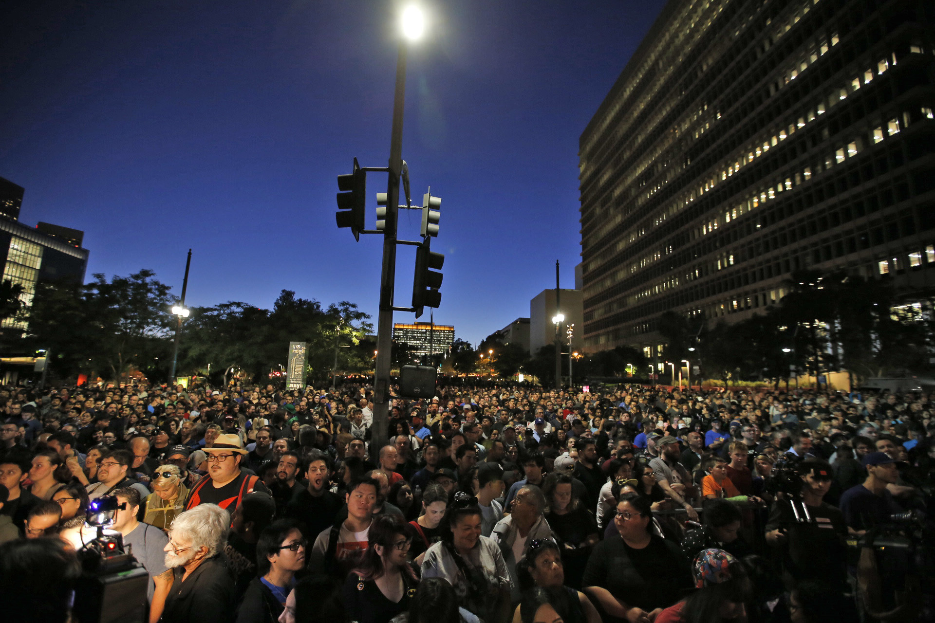 The crowd at the Bat-signal event honoring Adam West. (Francine Orr / Los Angeles Times)