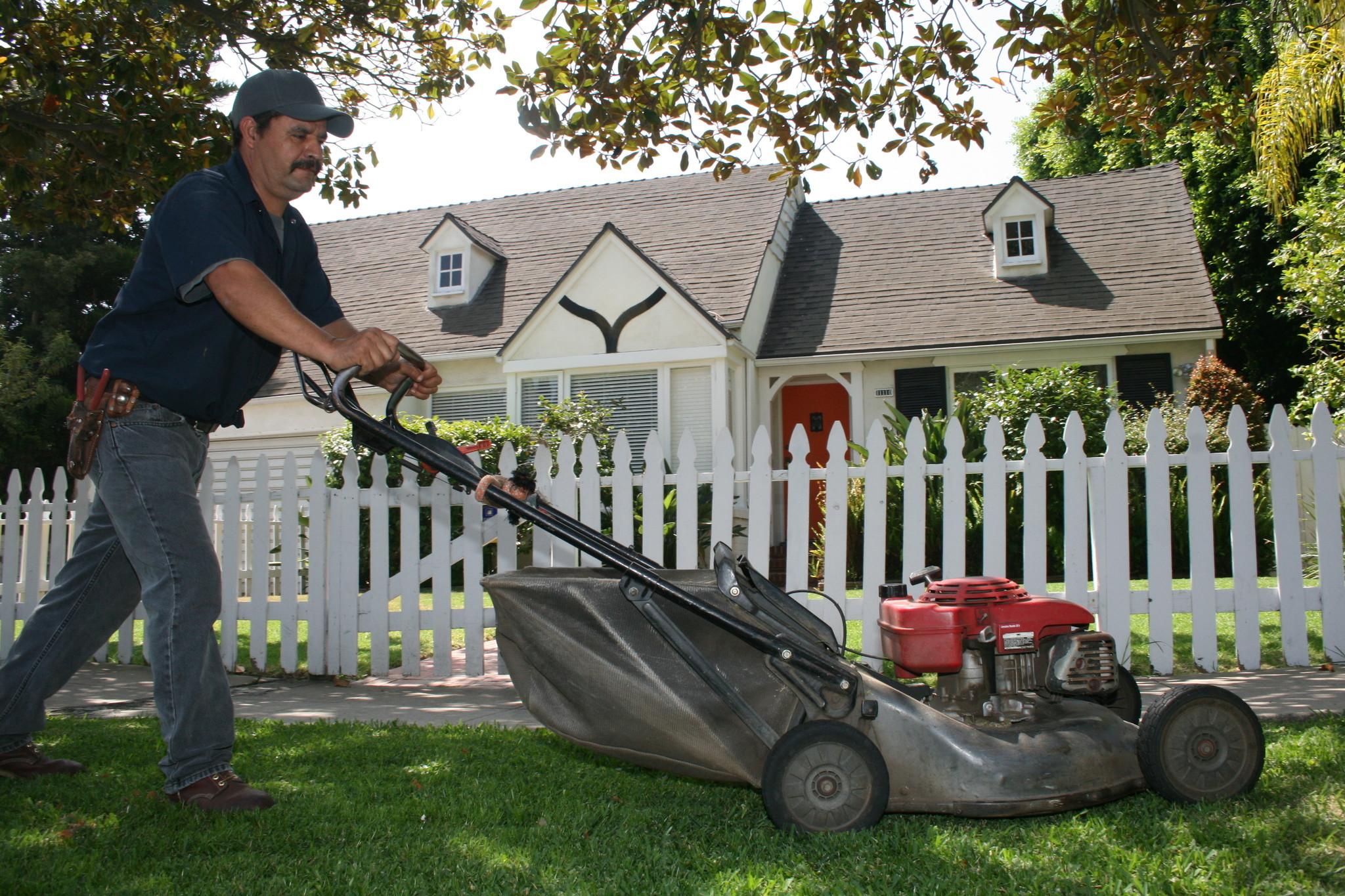 Ladrones acechan a jardineros hoy chicago for Trabajo jardinero