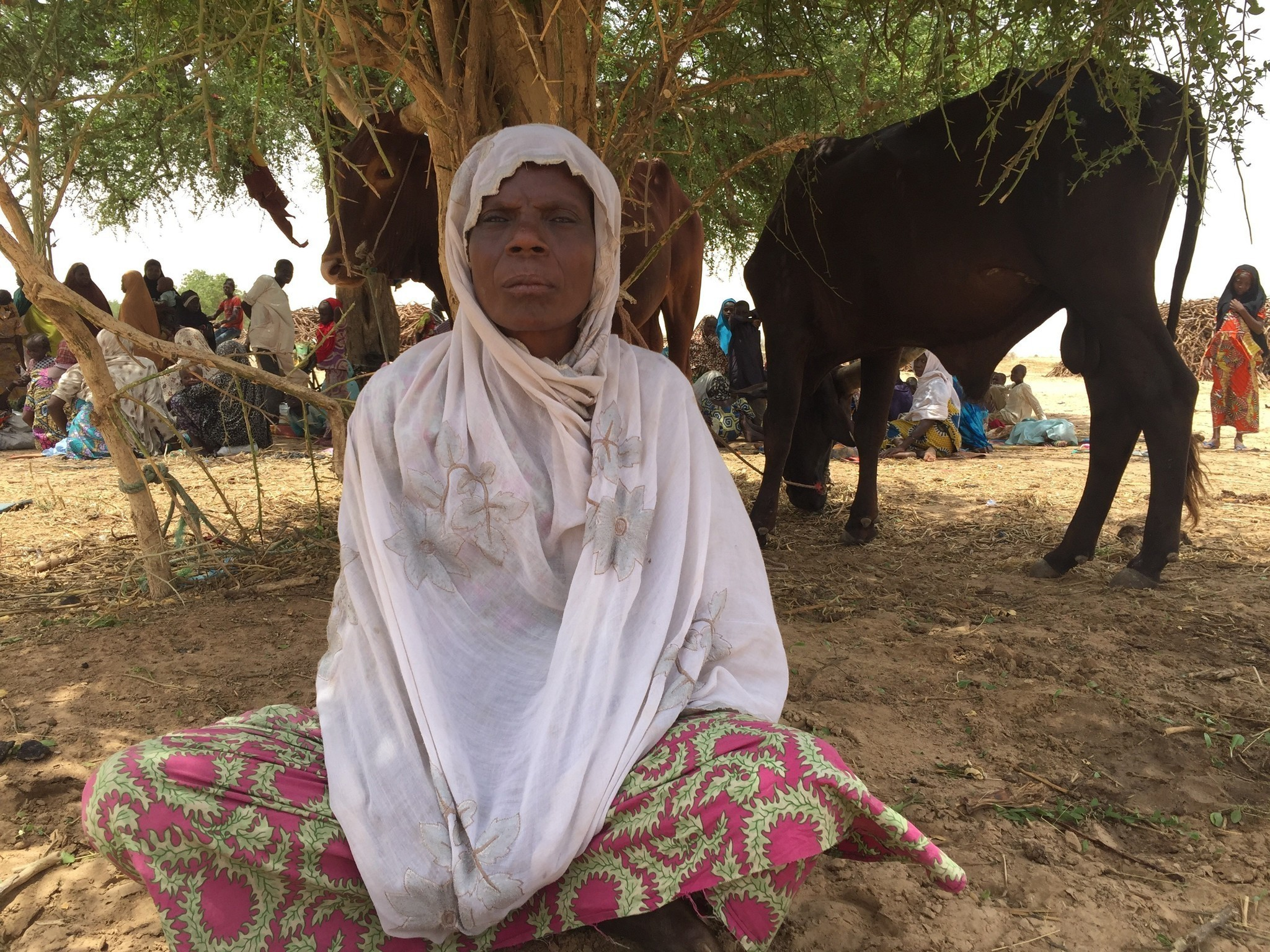 People cheered the release of Nigeria's 'Chibok girls' — but thousands of others were kidnapped, raped and forgotten