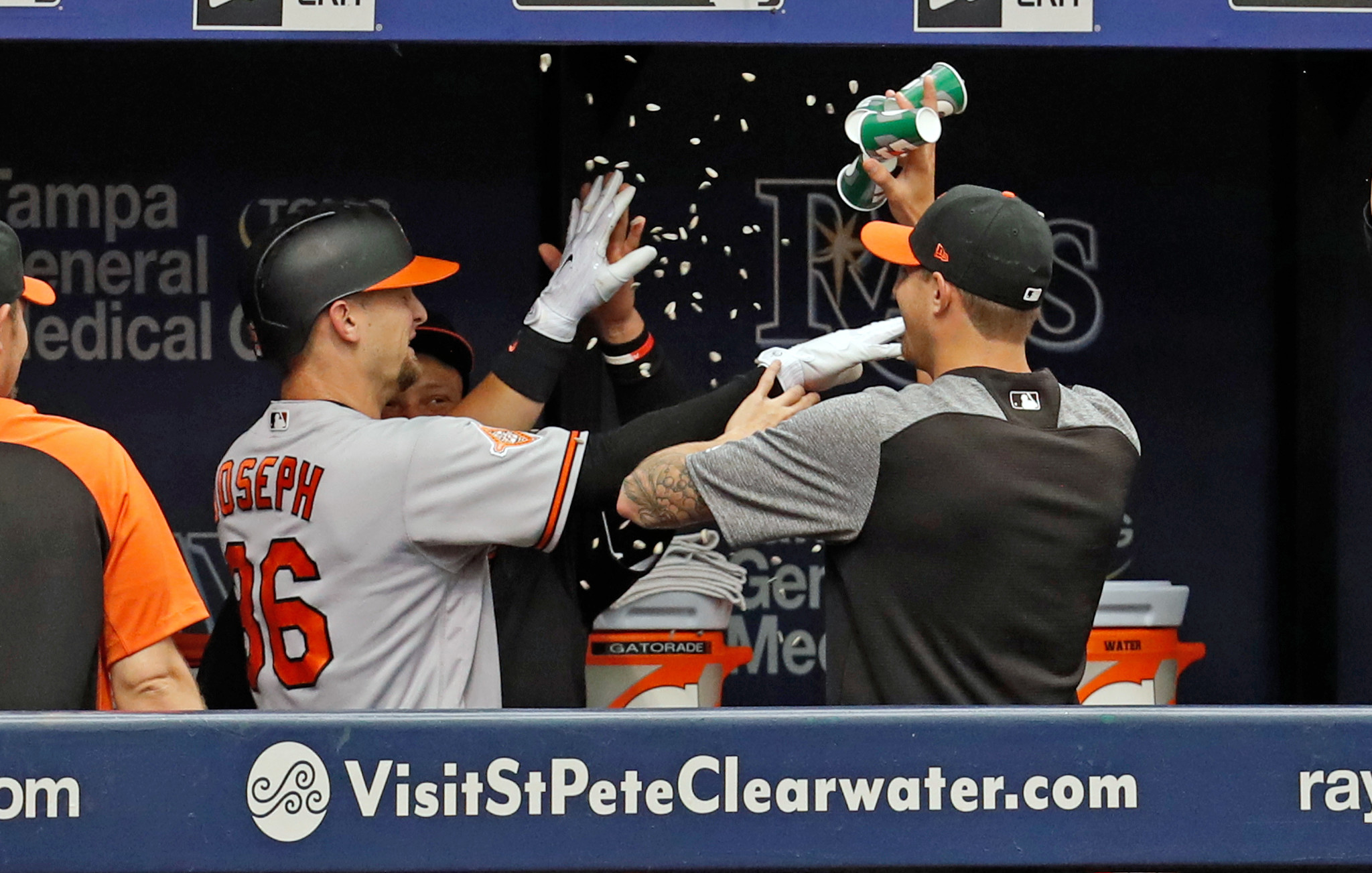 Bal-orioles-rays-observations-20170625
