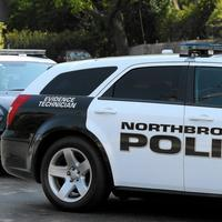 Police: Northbrook man catches burglars in the act