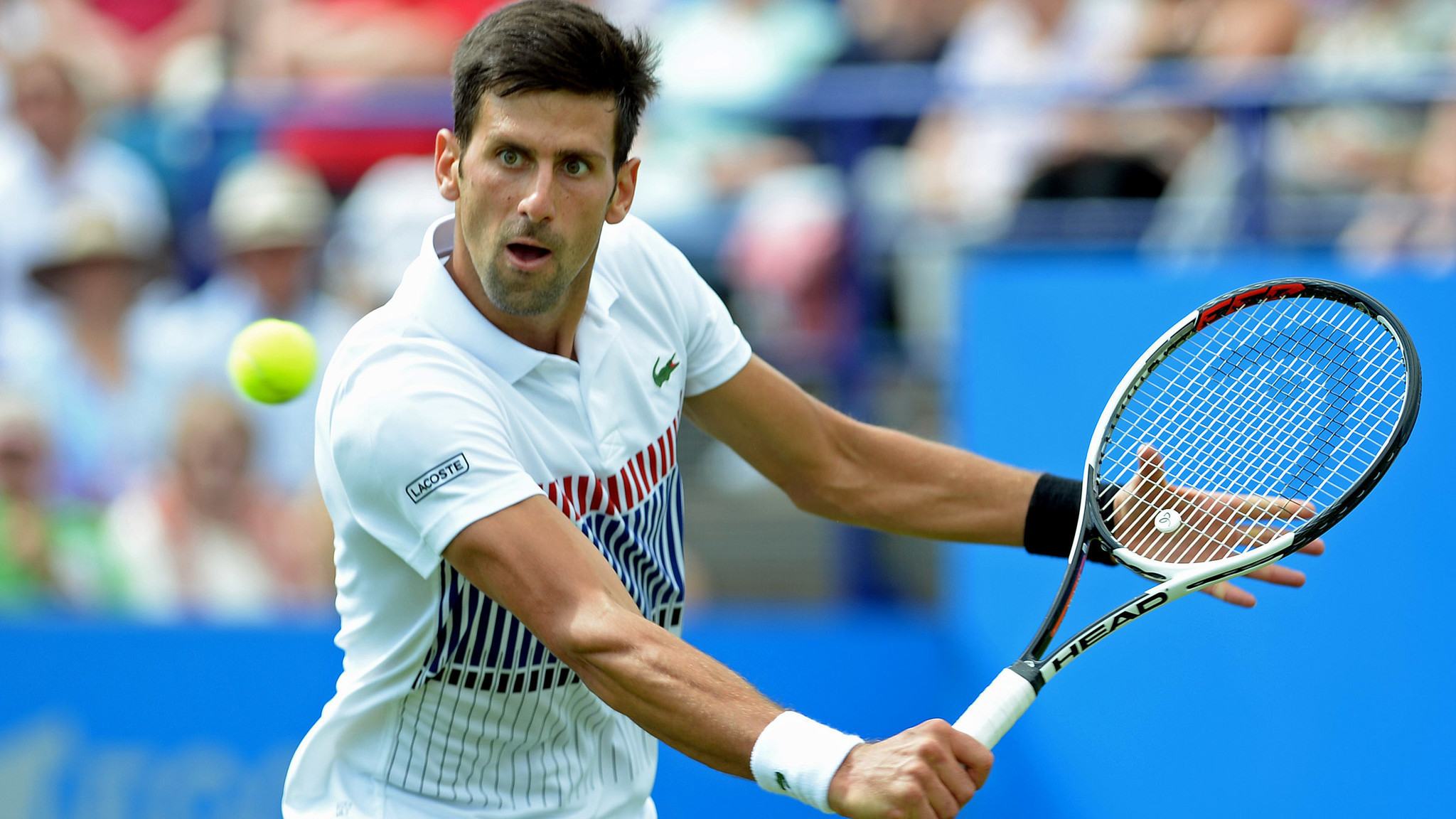 Novak Djokovic wins Wimbledon warmup tournament in Eastbourne LA