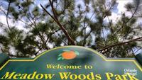Taft, Meadow Woods at transportation nexus near airport