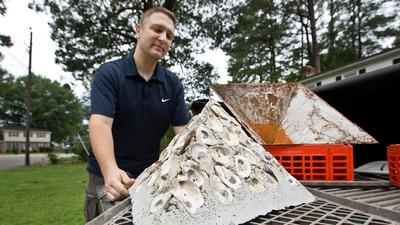 CNU professor's biogenic breakwater reef business meant to help shoreline