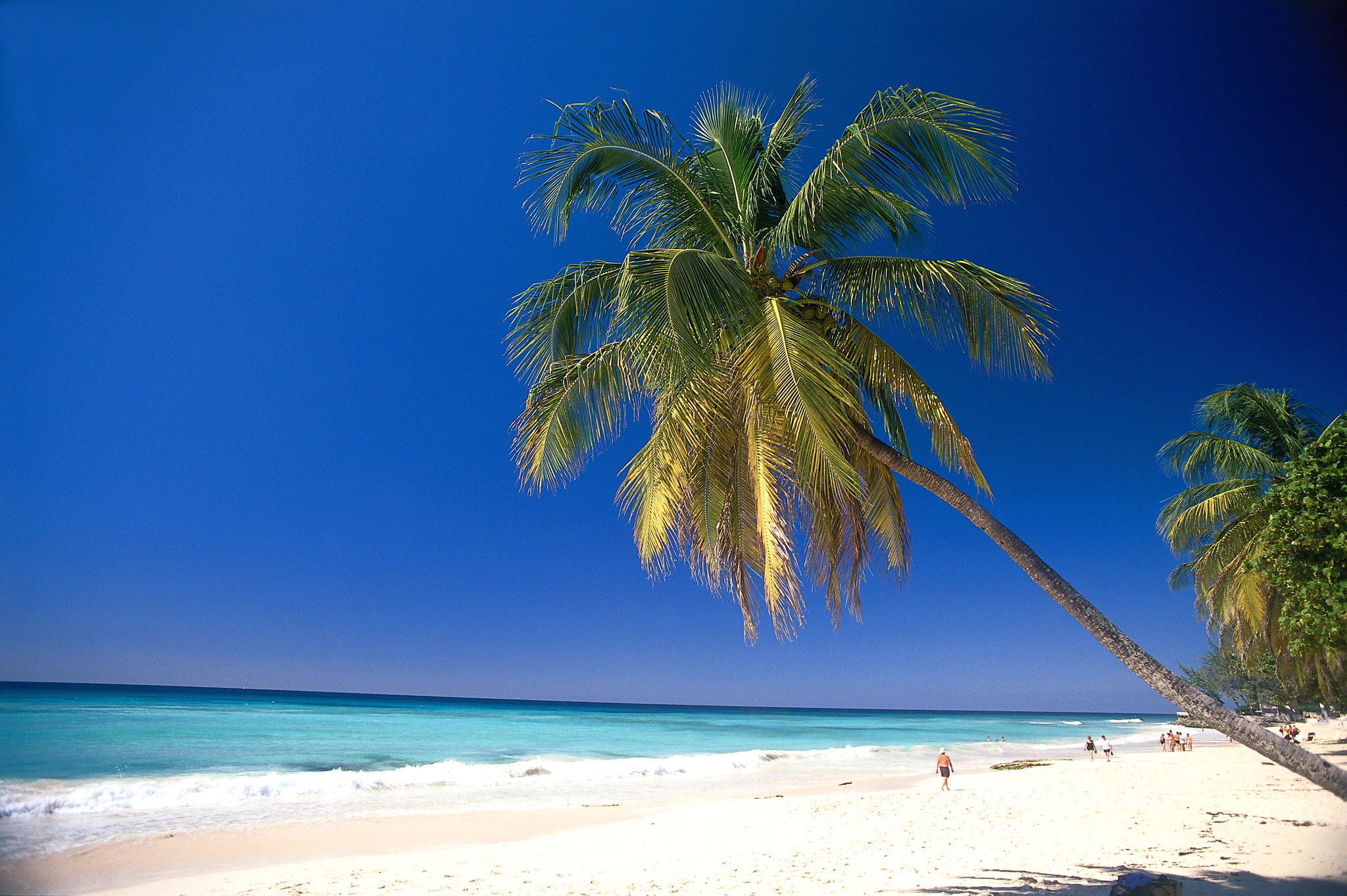 tourism in barbados 2017-4-3 barbados: july 2002  particularly tourism and financial services  barbados is currently engaged in trade negotiations in a number of international fora.