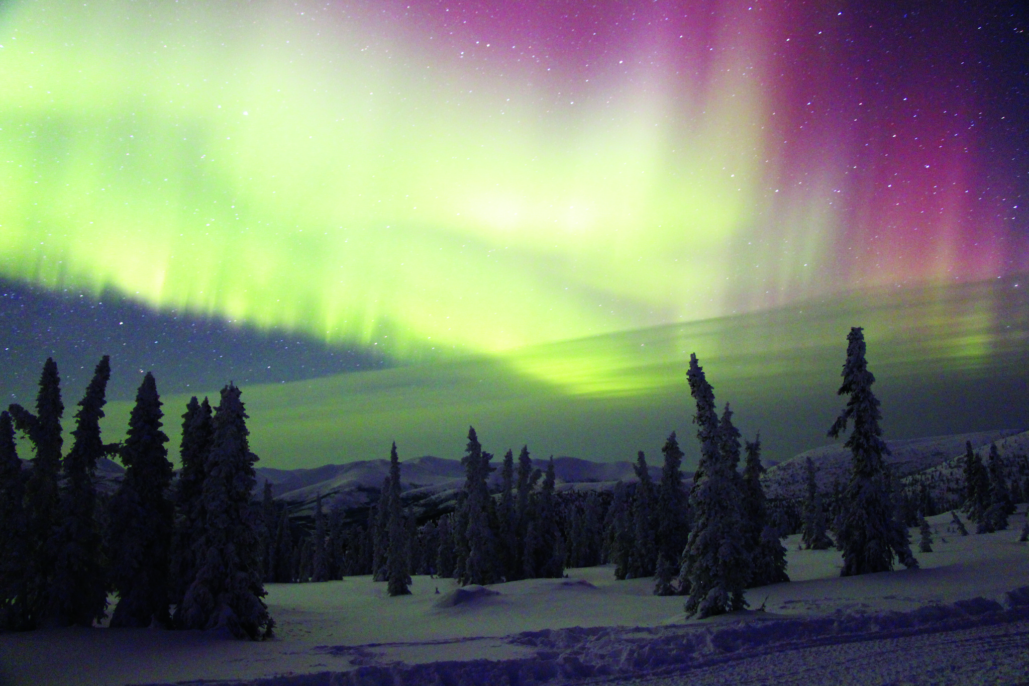 See the wonders of the northern lights on a winter tour of Alaska