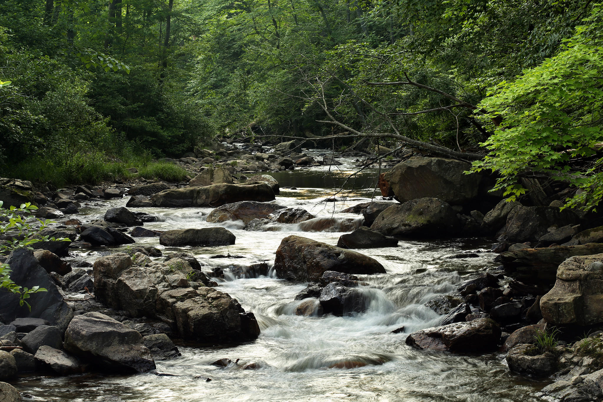 appalachian mountains natural resources