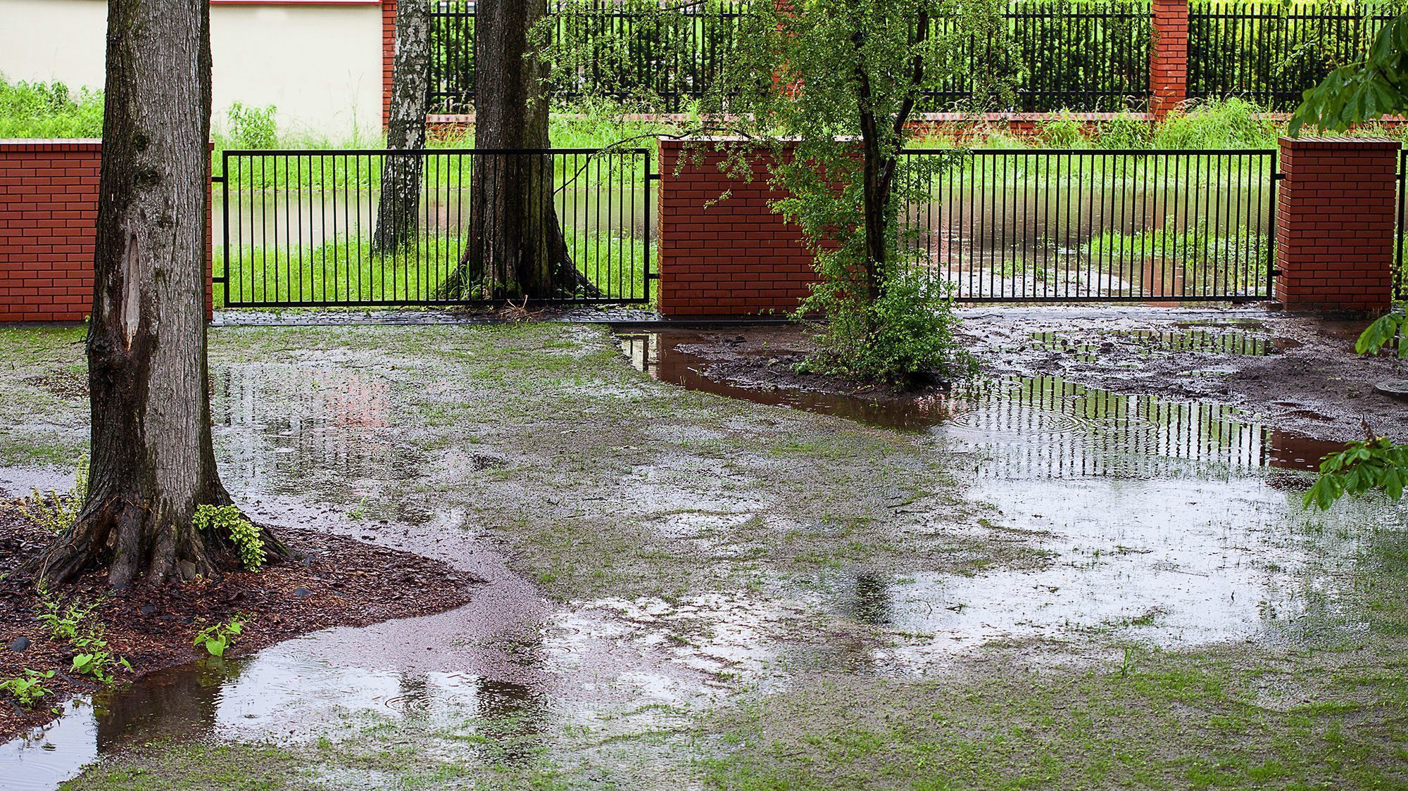 6 Tips To Remedy A Flooded Yard Or Garden Chicago Tribune