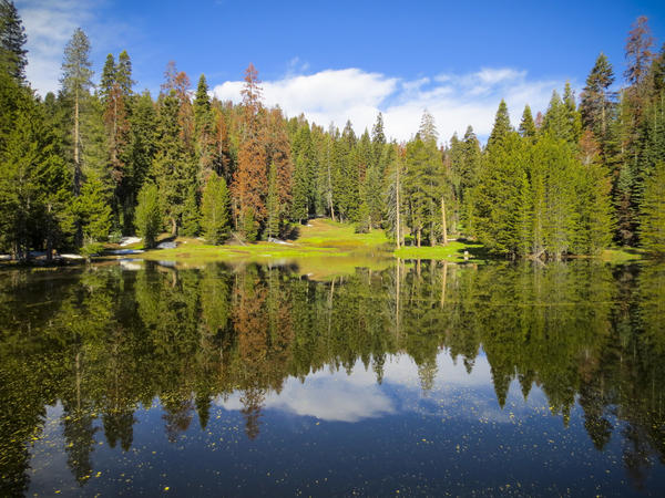 Majestic views and grand adventures await on a weekend escape to Kings Canyon National Park