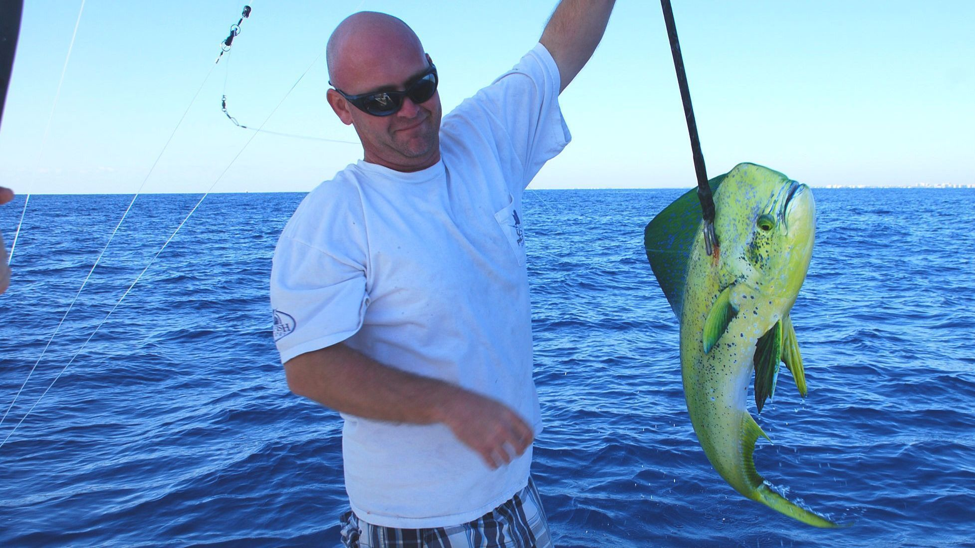 South florida fishing report dolphin and yellowtail for Florida fishing reports