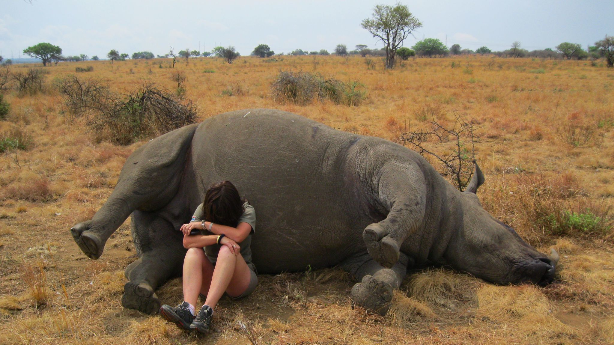 A Woman Fights To Save Her Rhinos Armed Only With Her