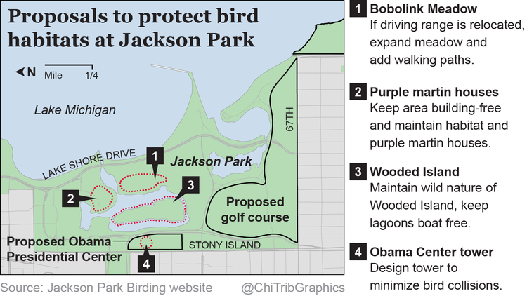 Proposals to protect bird habitats at Jackson Park