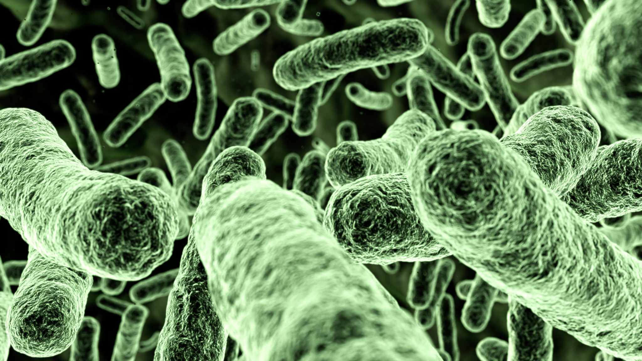 Bacteria Myrtle Beach Eat Flesh