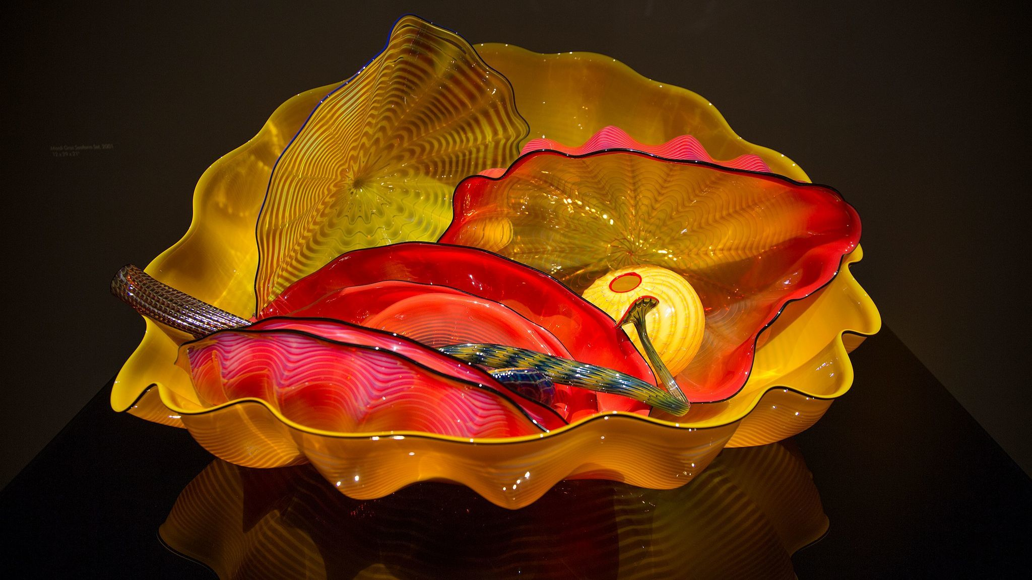 """The Mardi Gras Seaform Set"" is a part of the Chihuly exhibit at the Catalina Island Museum."