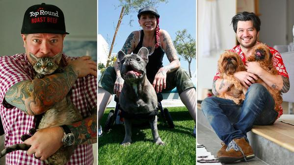 From left, Steven Fretz and his Devon Rex cat Lil Chef, Dakota Weiss and her French bulldog Chaplin and Josef Centeno and his Brussels Griffons Winston and Bear. (Left: Mel Melcon / Los Angeles Times; center: Claire Hannah Collins / Los Angeles Times; right: Christina House / For The Times)