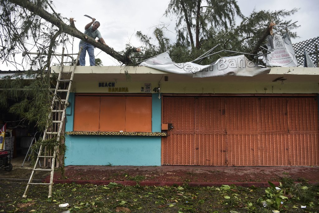 An employee works to remove a felled tree from a rooftop in the aftermath of Hurricane Irma, in Fajardo, Puerto Rico, Thursday, Sept. 7, 2017.