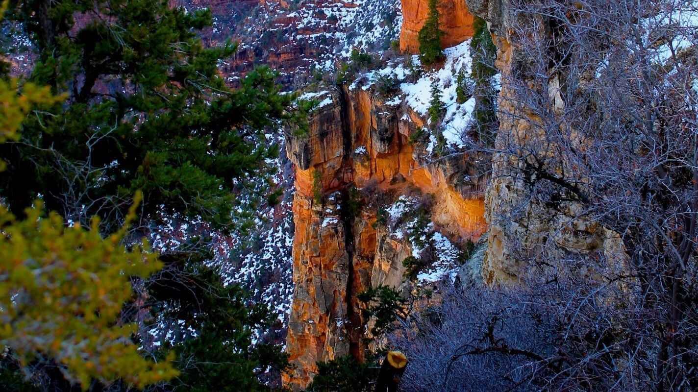 'Canyon Wall' by Don Stouder is part of 'Five Creative Perspectives.'