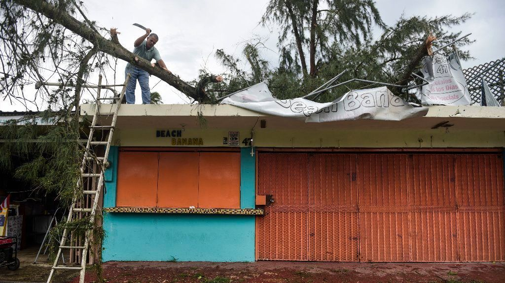 An employee works to remove a felled tree from a rooftop in Fajardo, Puerto Rico, in the aftermath of Hurricane Irma.