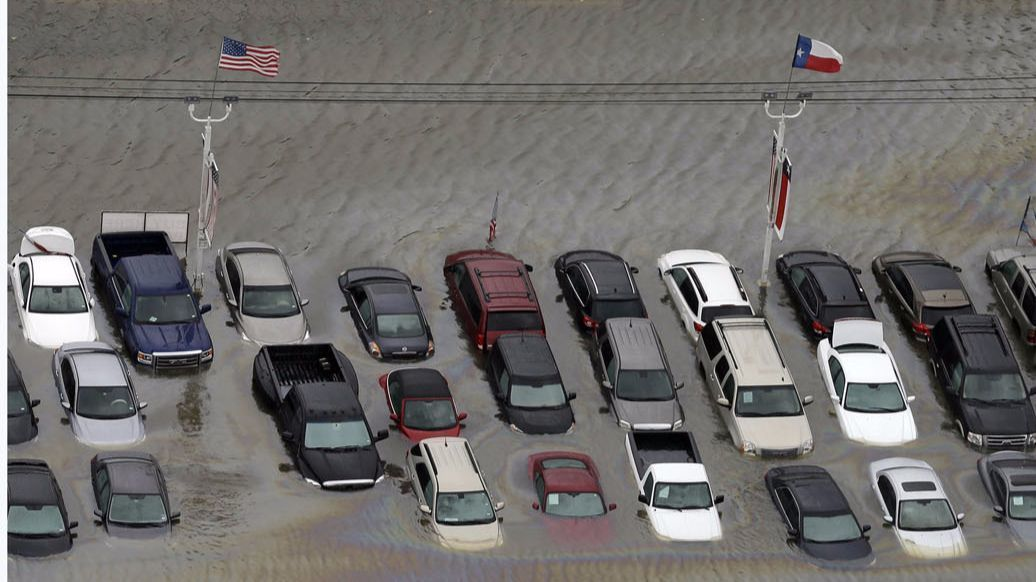 How to Avoid Buying a Car Flooded by Hurricanes