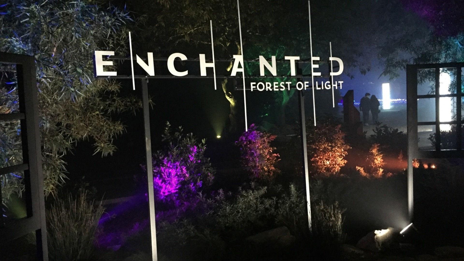 Descanso garden 39 s enchanted forest la times - Descanso gardens enchanted forest of light ...