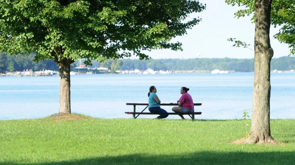 Waterfront Cleanup Set For Saturday In Edgewood And