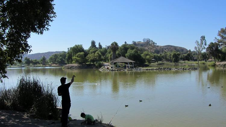 San diego county 39 s best lakes the san diego union tribune for Lake dixon fishing