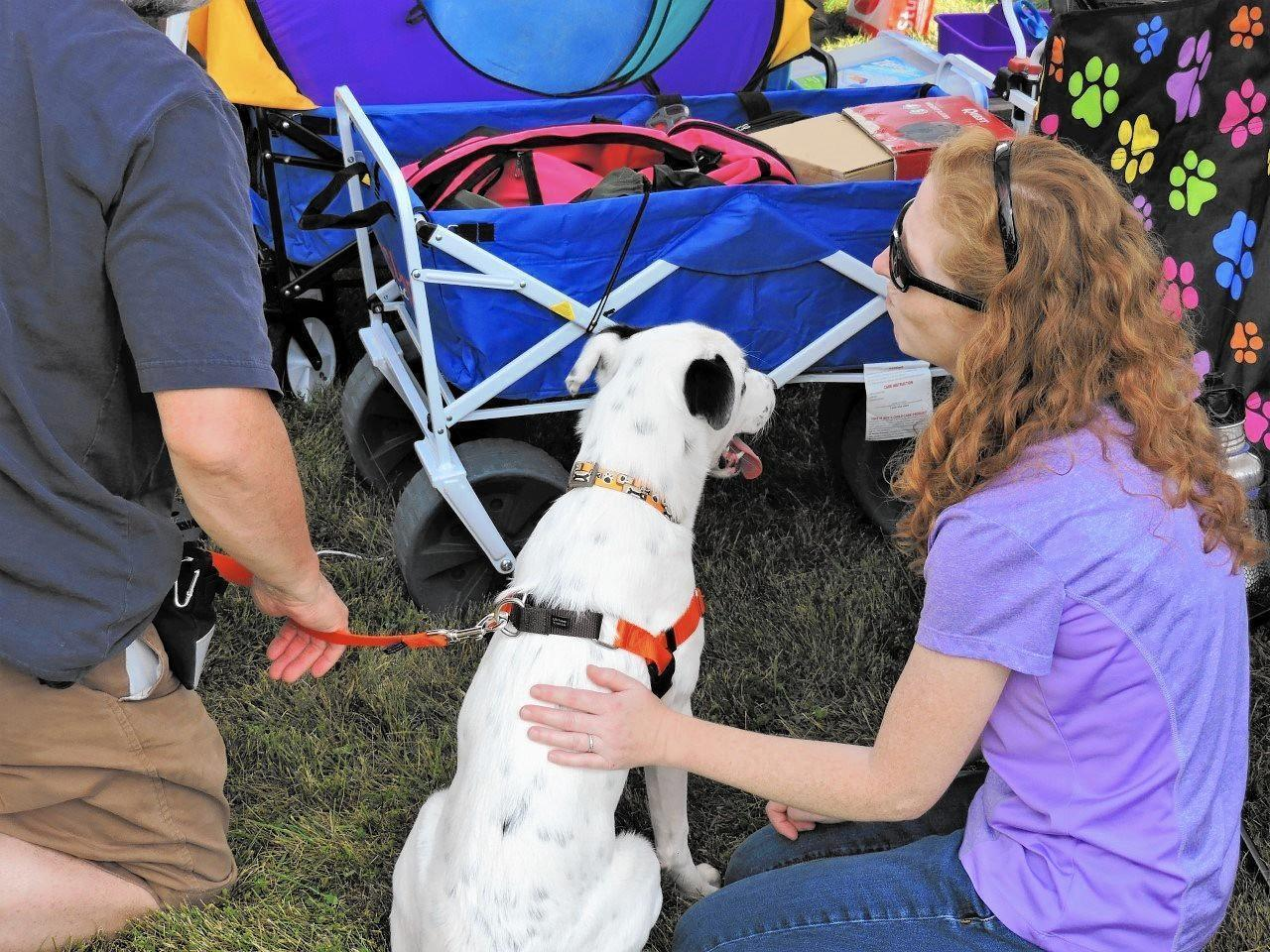 Pets-a-Palooza teaches the power of positive training