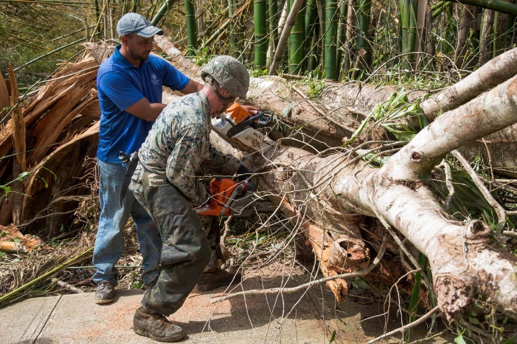 A U.S. Marine assigned to Battalion Landing Team, 2nd Battalion, 6th Marine Regiment, 26th Marine Expeditionary Unit (26th MEU), and a local resident work together to clear a tree from the main road as part of Hurricane Maria relief efforts in Ceiba, Puerto Rico on Sept. 27.