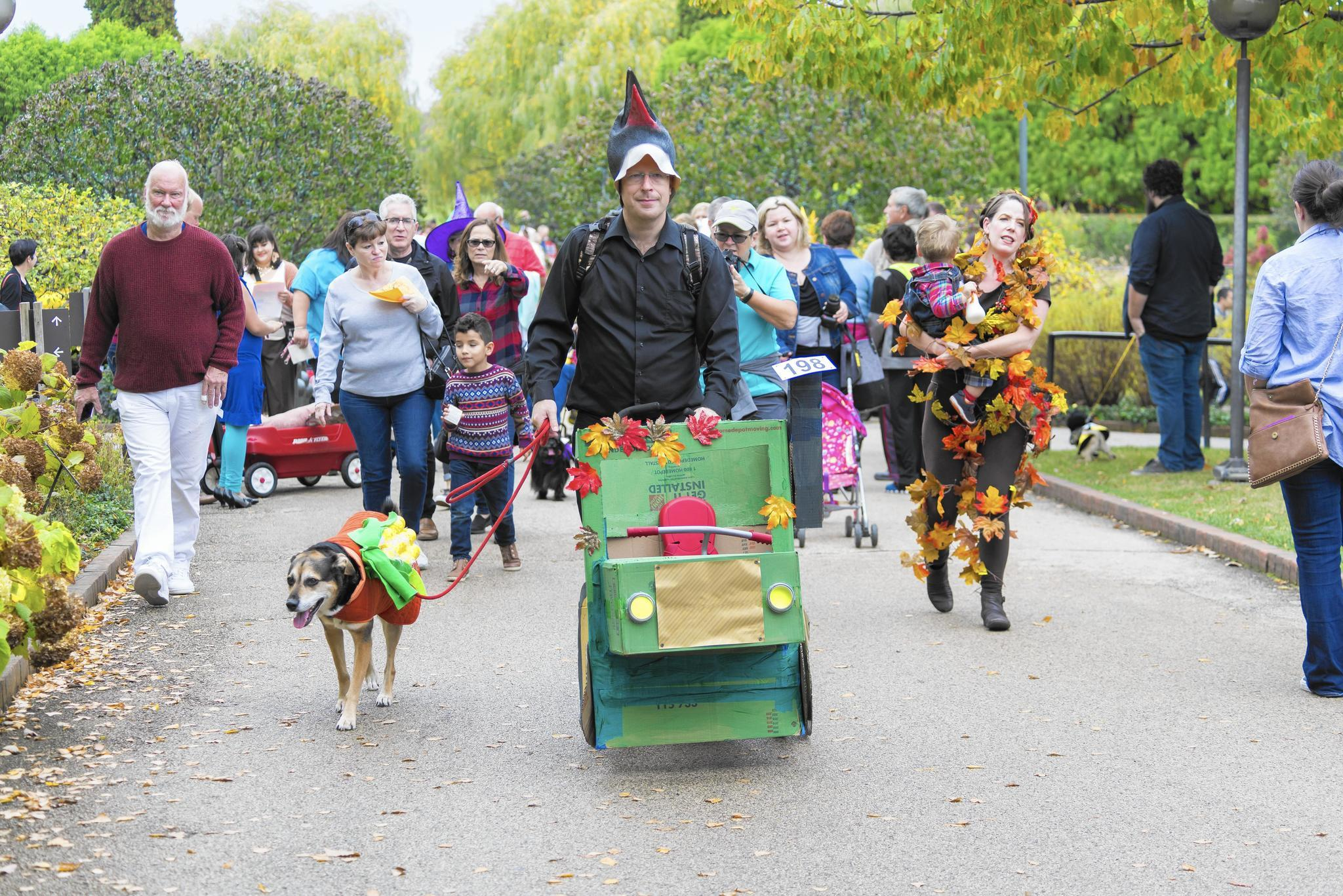 Say boo! Your guide to 2017 Halloween fun - Northbrook Star
