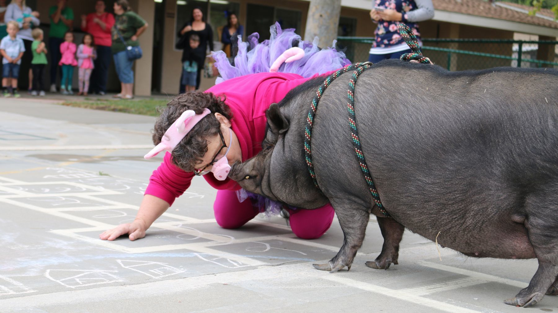 Dressed in swine garb, Ramona Lutheran Christian School Principal Elaine Crary kisses a pig in front of her students after telling them she would if they hit their book fair sales goal. They surpassed the goal.