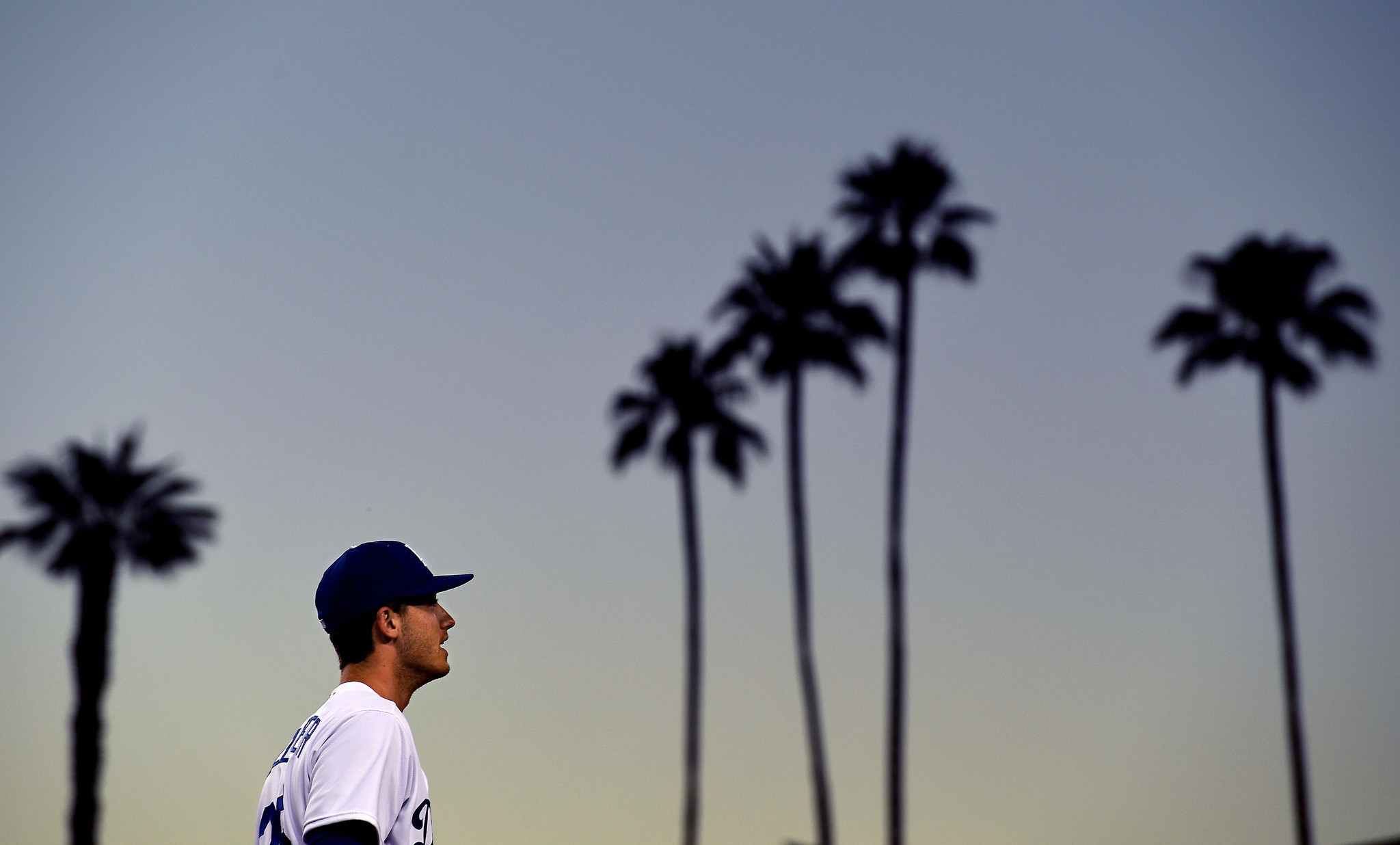 Dodgers rookie Cody Bellinger is flanked by palm trees during a game at Dodger Stadium.
