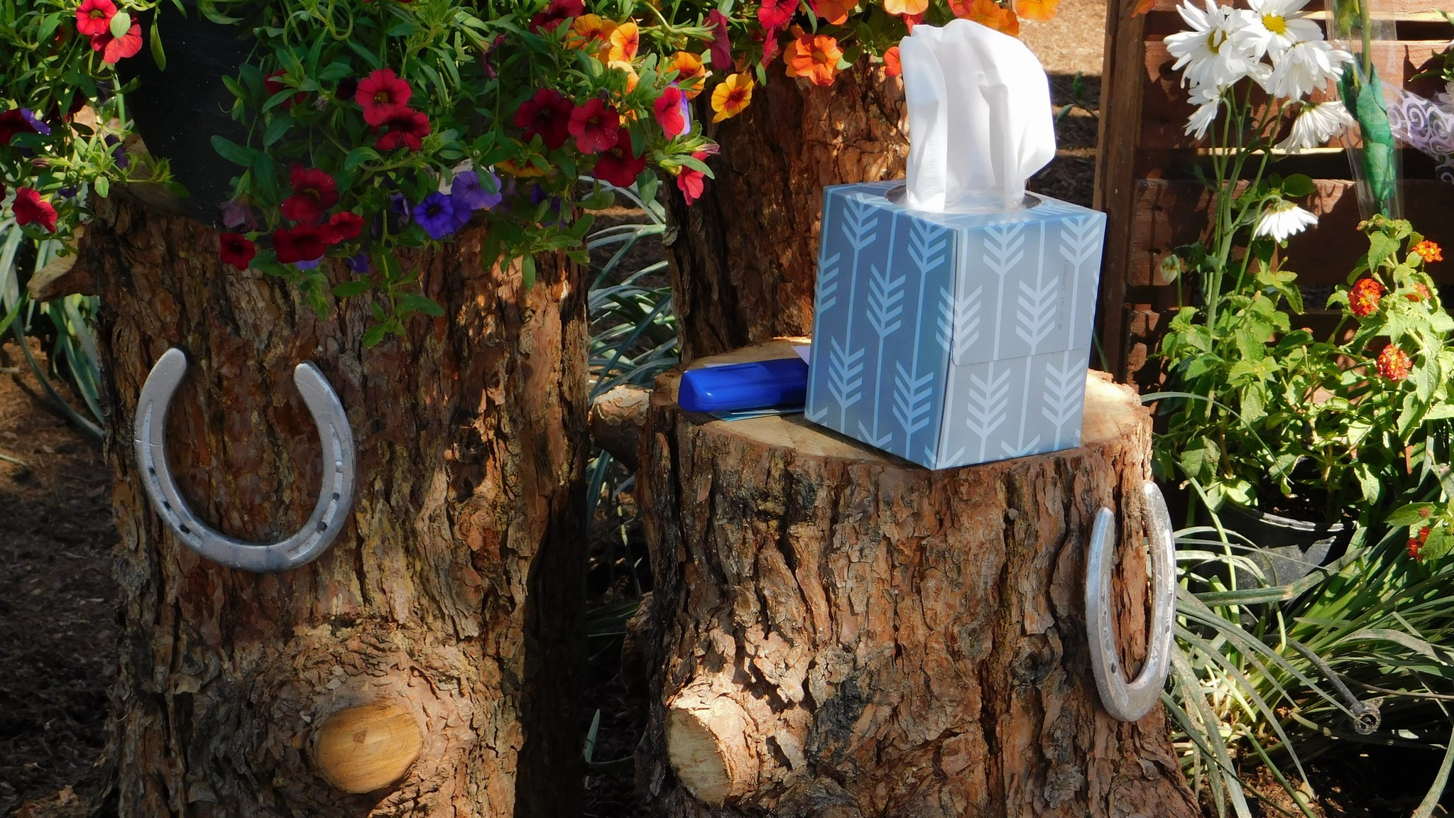 A box of tissues sits on a tree stump at the new Las Vegas Community Healing Garden on Oct. 7.