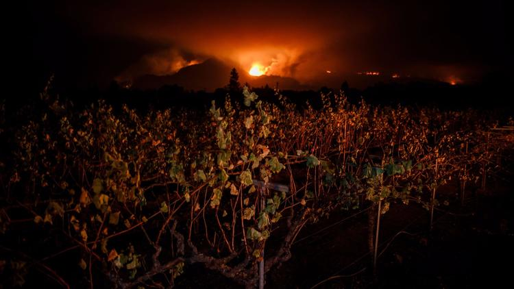 Wildfire is visible Tuesday from a vineyard near Kenwood. (Marcus Yam / Los Angeles Times)