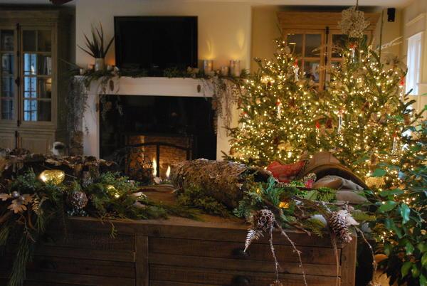 Geneva Christmas House Tour Dec 1 & 2
