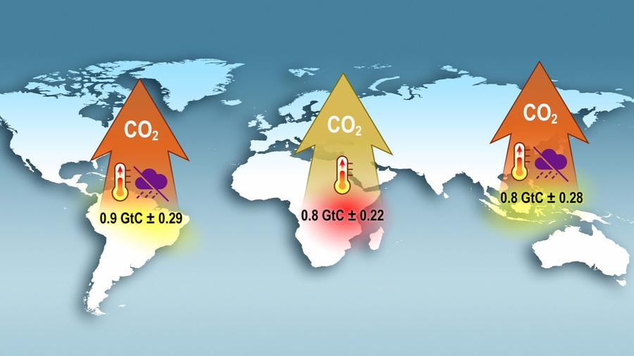 This graphic depicts the unusually high levels of carbon dioxide release from three tropical continents during the 2015 El Niño. — Graphic: NASA-JPL/Caltech.