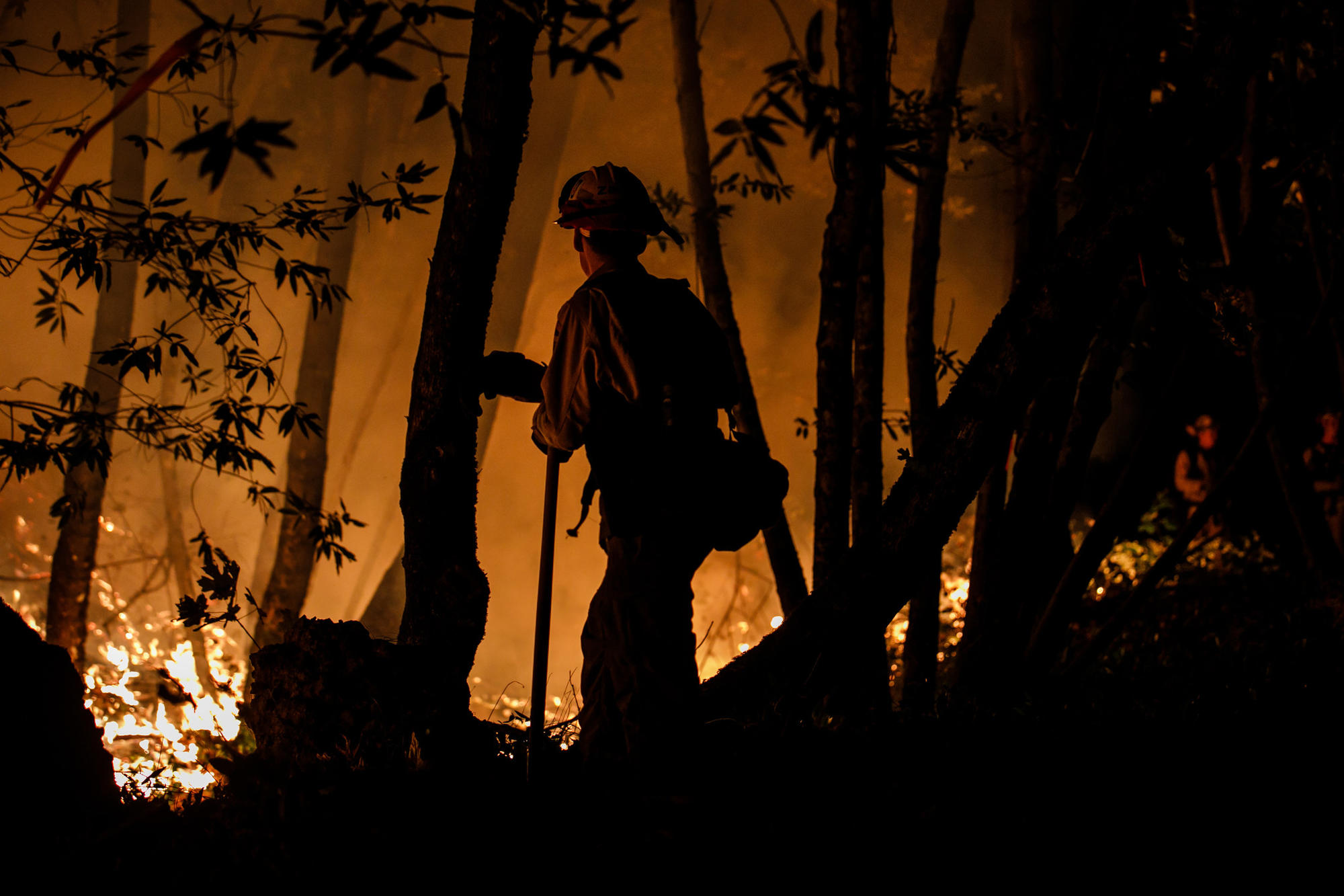 A firefighter works along Highway 29 north of Calistoga on Oct. 12.