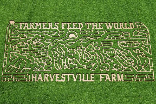5 corn mazes to get lost in this fall chicago tribune