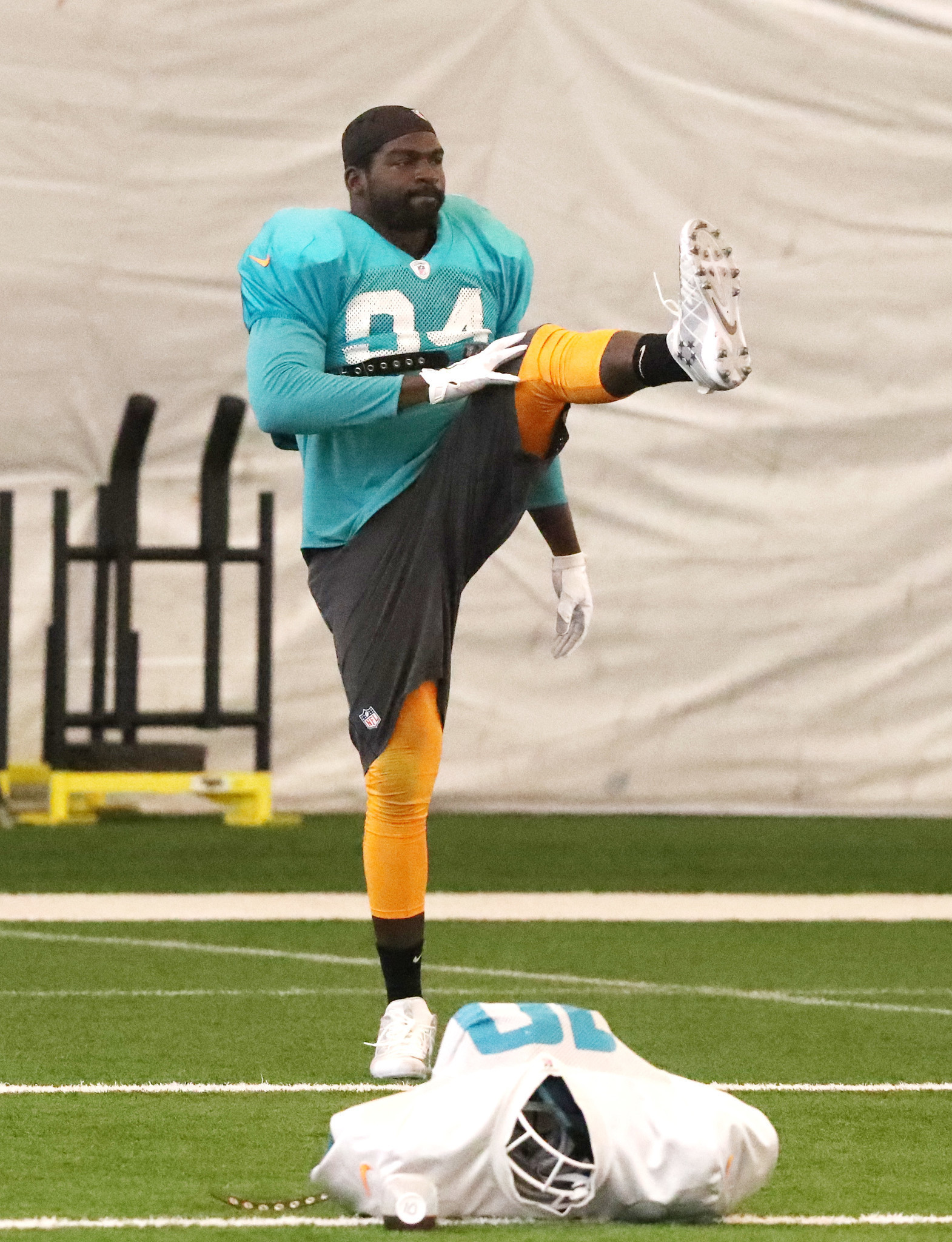 Fl-sp-dolphins-notes-20171019