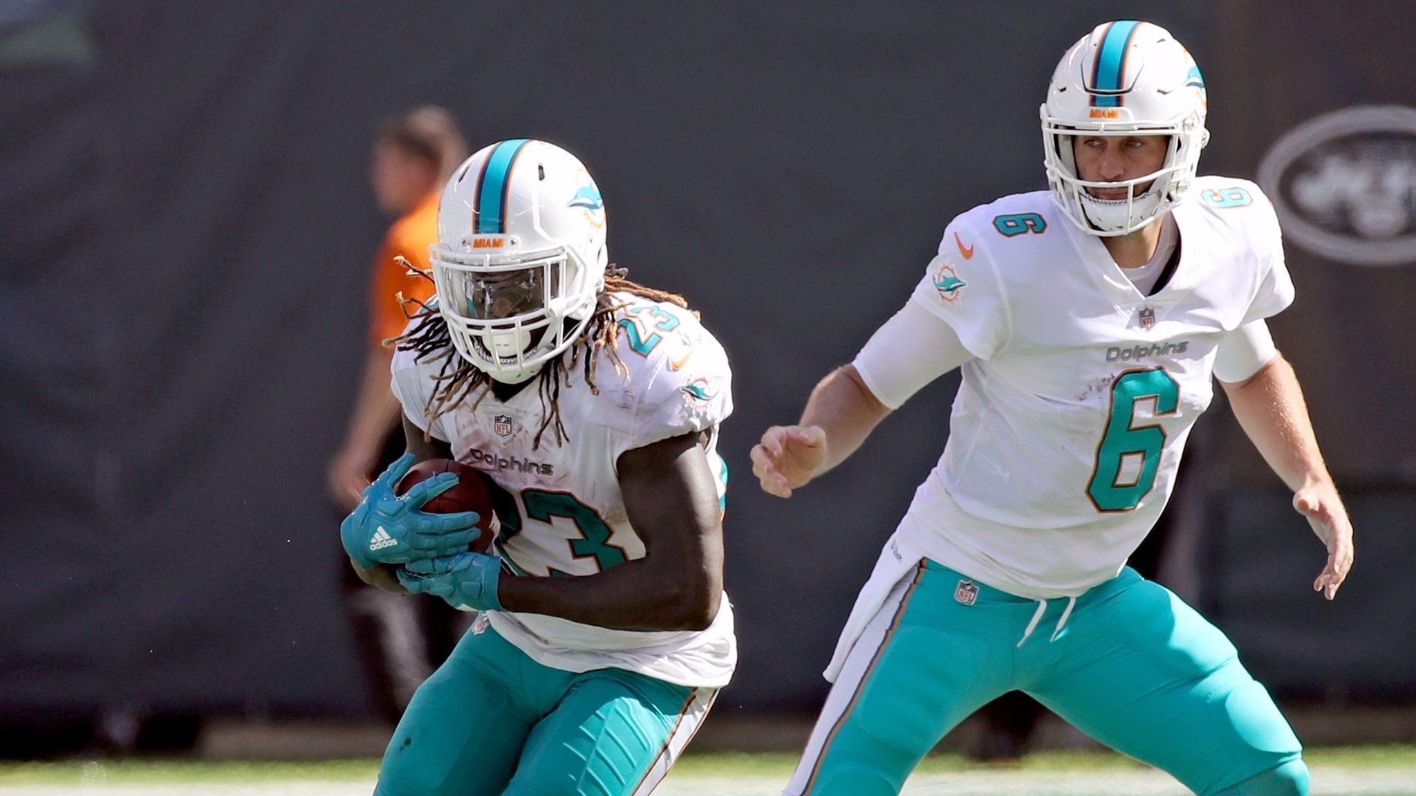 Fl-sp-dolphins-20171021