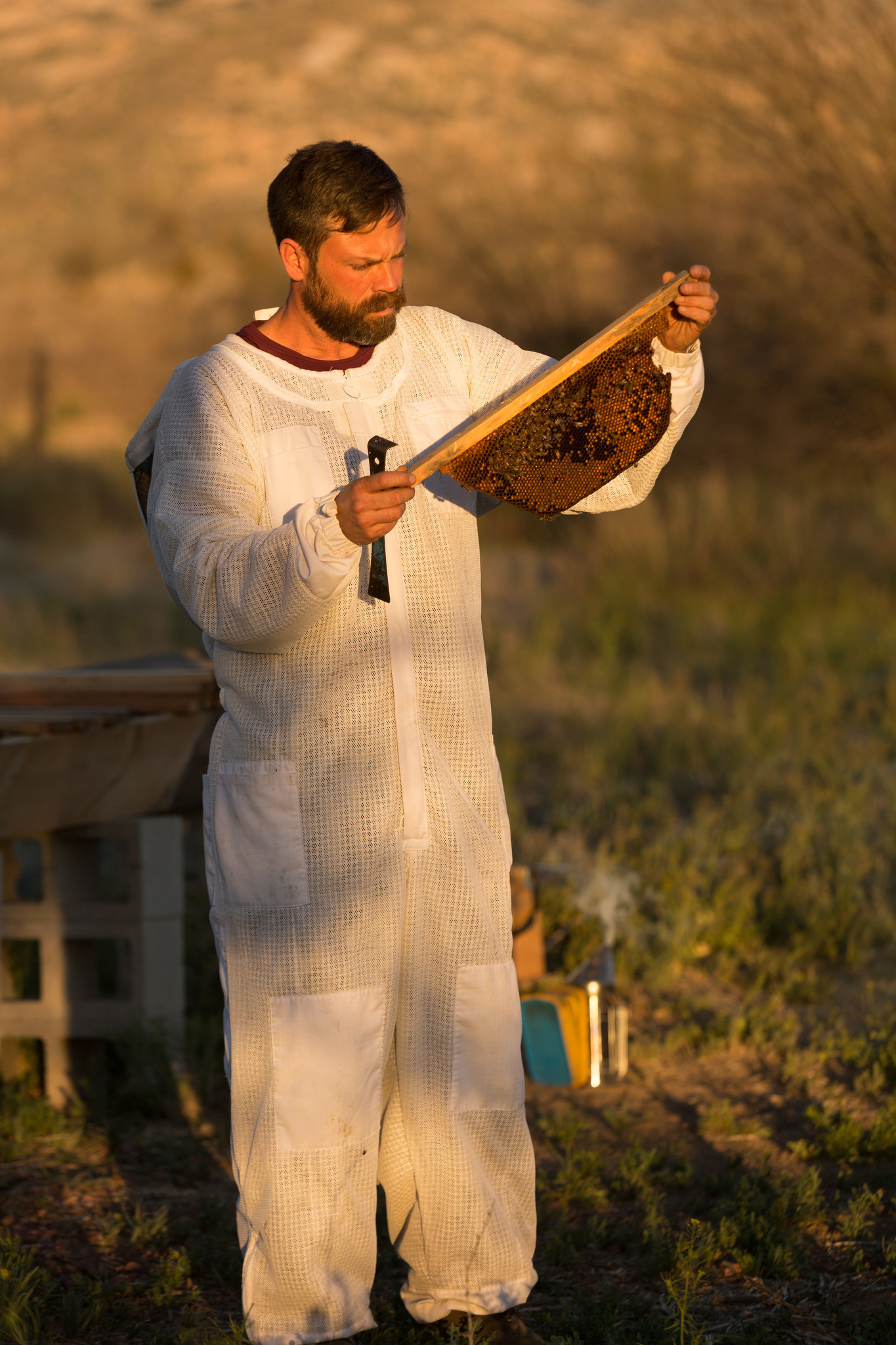 Miraval Arizona resident beekeeper Noel Patterson cares for thousands of bees at the Tucson property.
