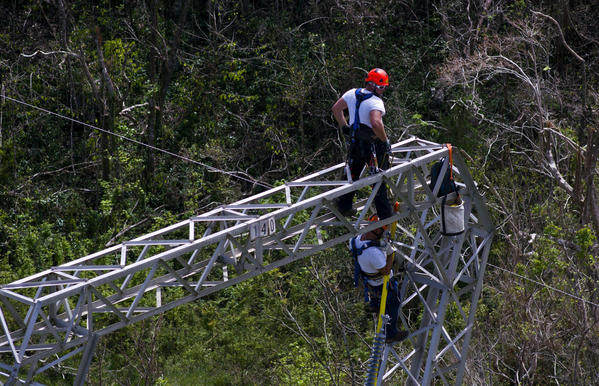Whitefish Energy Holdings workers restore power lines damaged by Hurricane Maria in Barceloneta, Puerto Rico, on Oct. 15. (Ramon Espinosa / Associated Press)