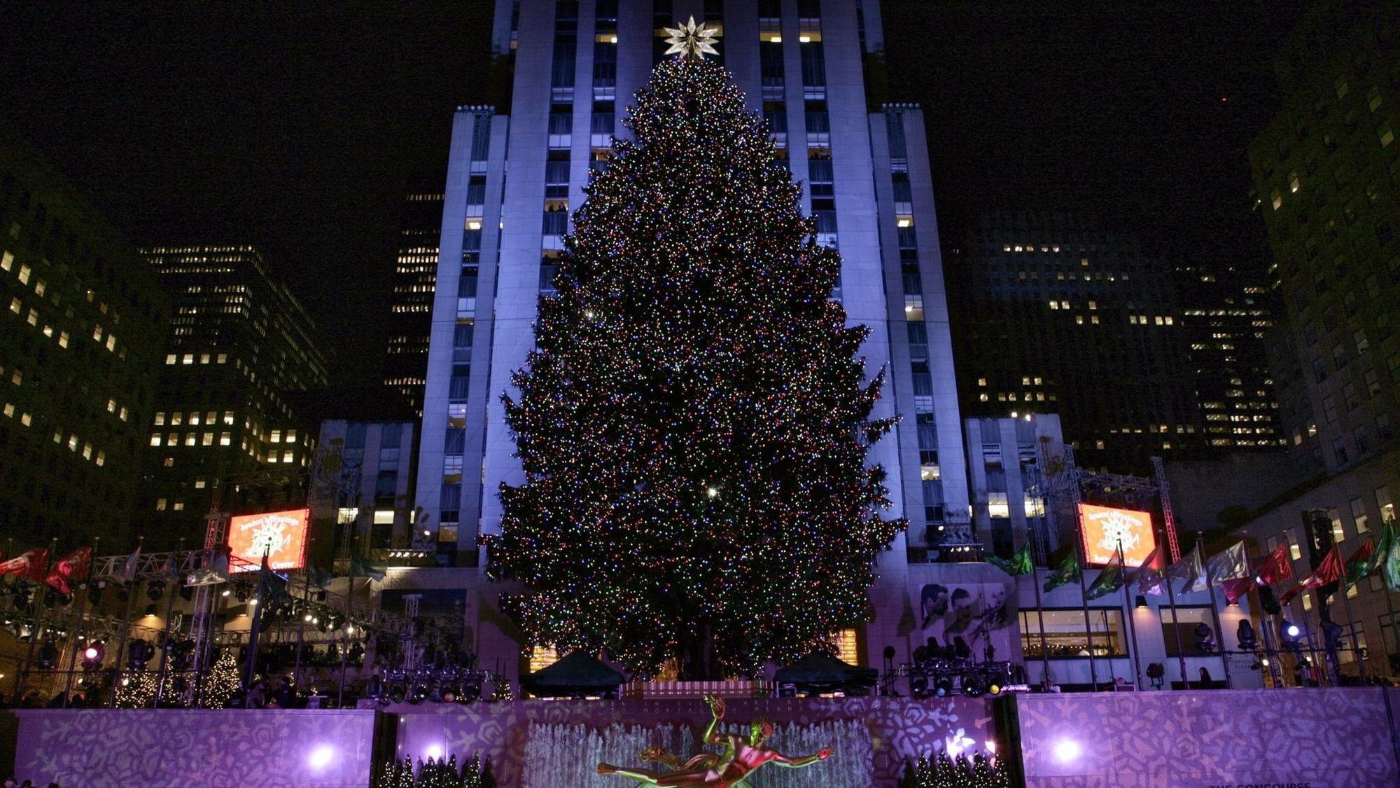 rockefeller center christmas tree to come from pennsylvania the morning call - Where Does The Christmas Tree Come From