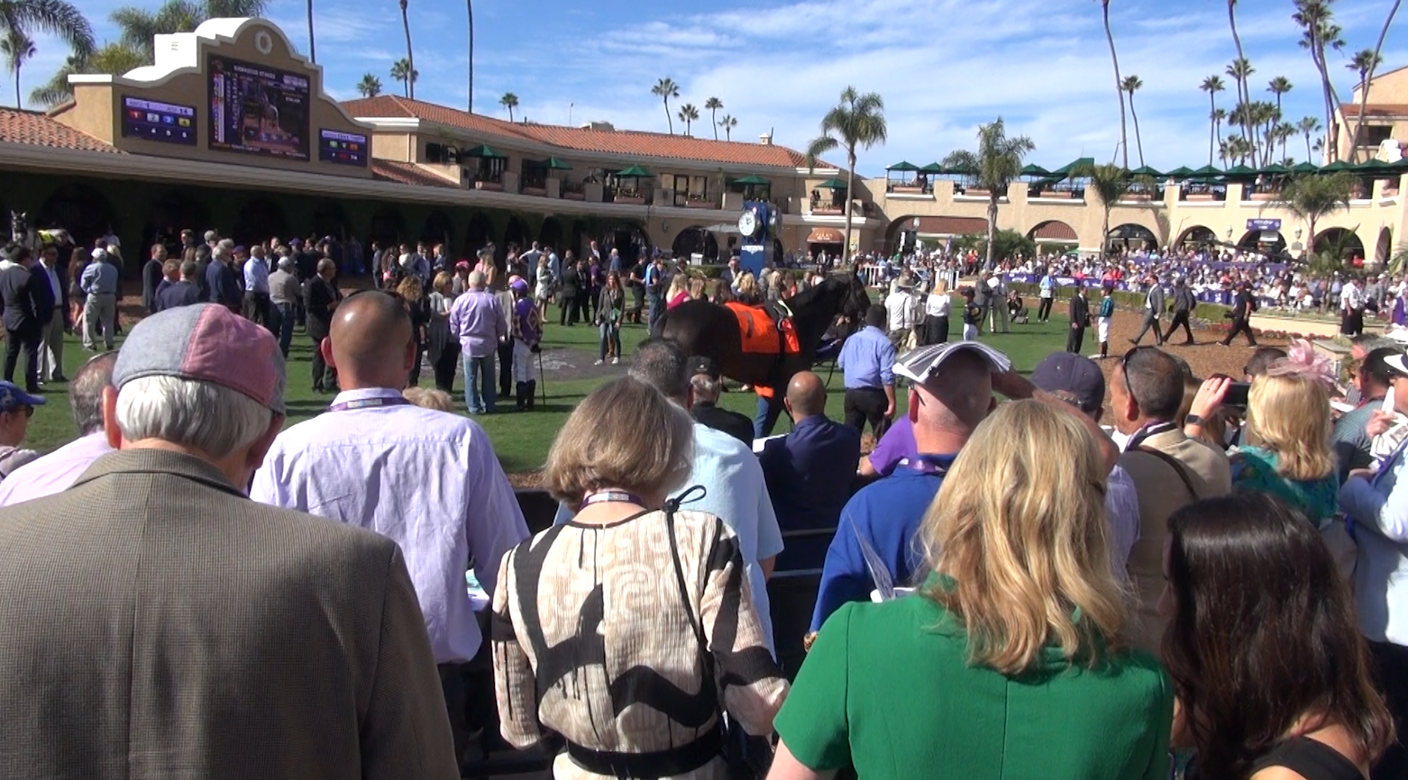Breeders' Cup opens to a packed house in Del Mar
