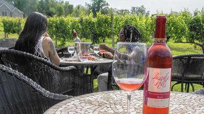 Paradise Hills: A Welcoming, Family-Operated Winery